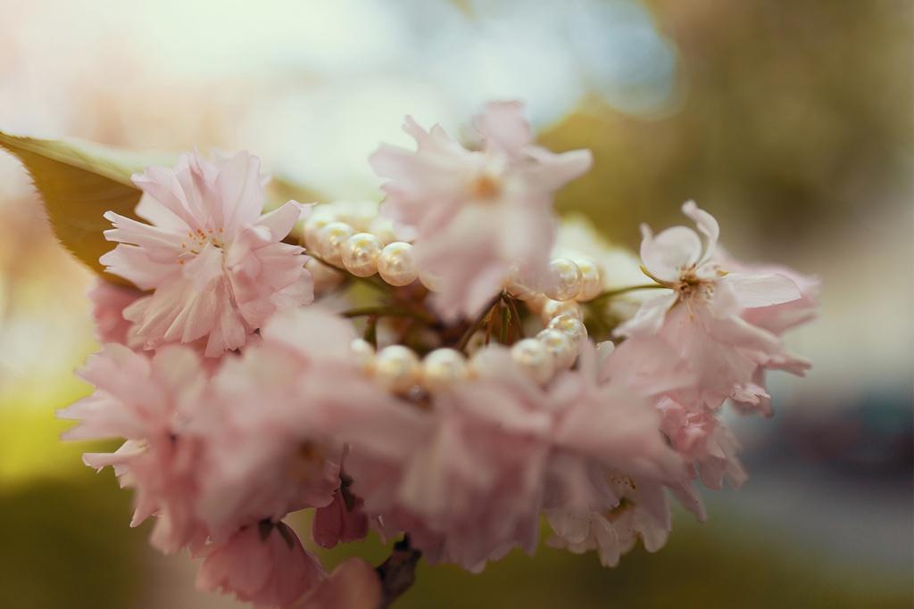 Perlen Armband in Kirschblüten