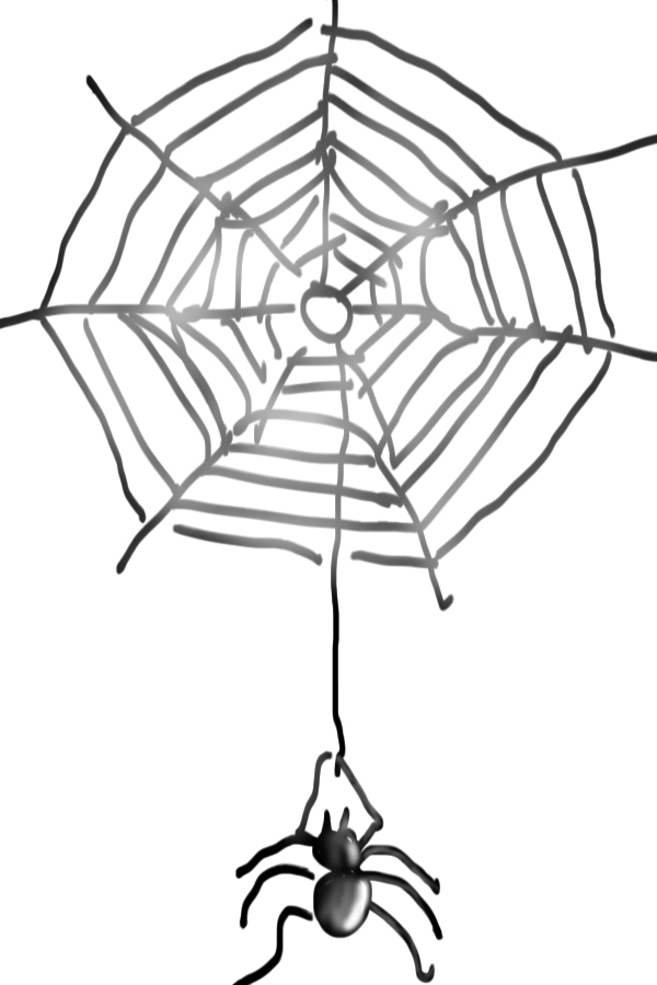 Spinnen-Netz-2