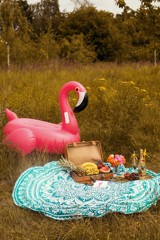 Pinker Flamingo und Picknick