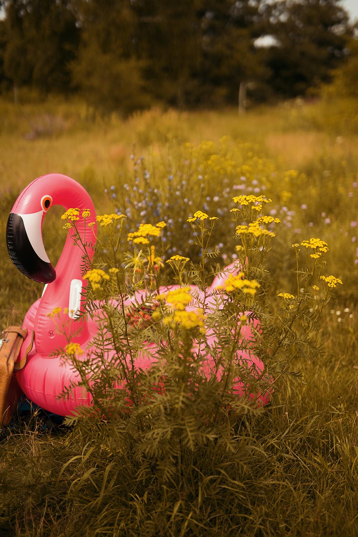 Pinker Flamingo zum aufblasen