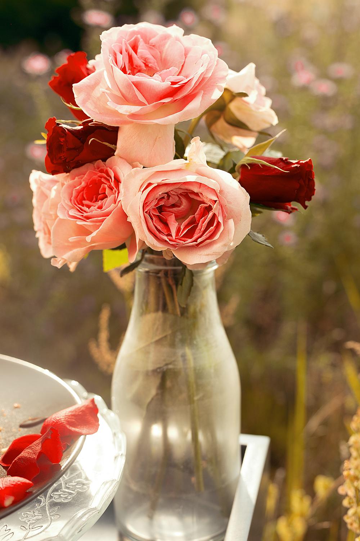 Rote und rosa Rosen