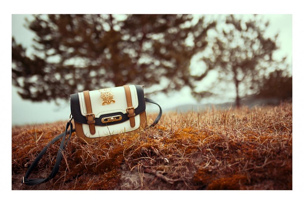 Eine schöne weiße Tasche mit goldenen Details