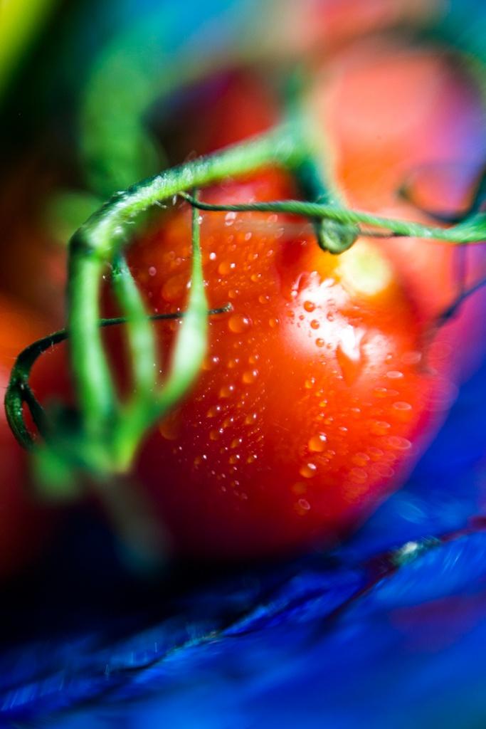 Eine Tomate mit Grün und Wasserperlen