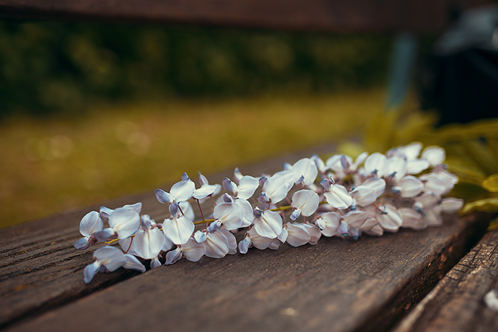Lilane Blüten auf Holz