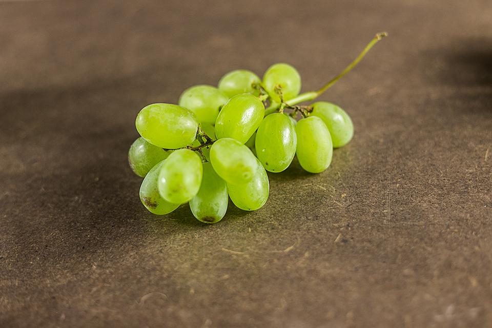 Saftige Trauben grün