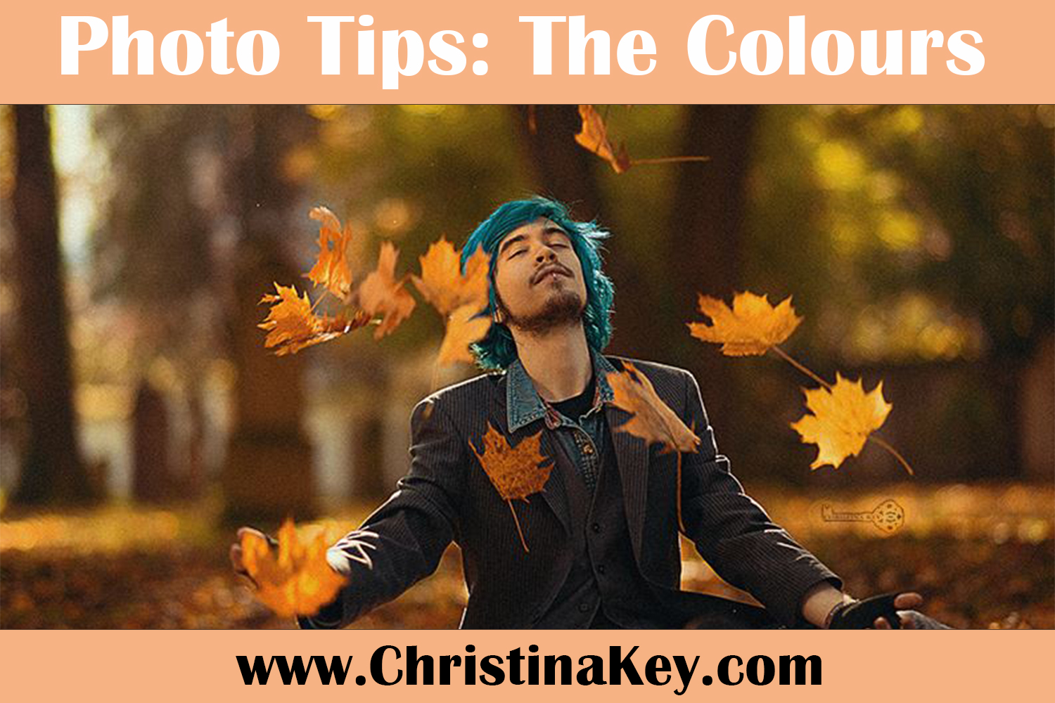 Photo Tips The Colors