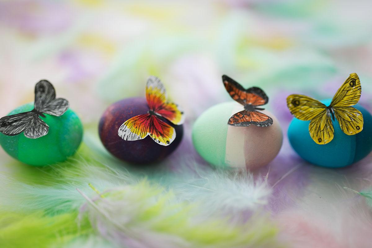 Bunte Ostereeier Schmetterlinge Oster DIY