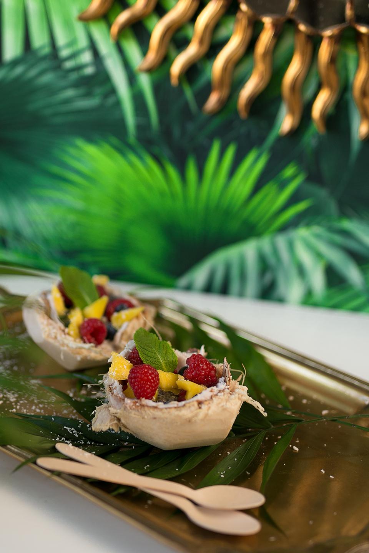 Kokosnuss Dessert gesund