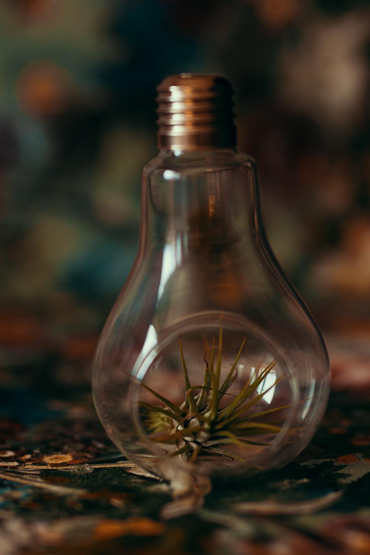 Glühbirne mit Abschatter