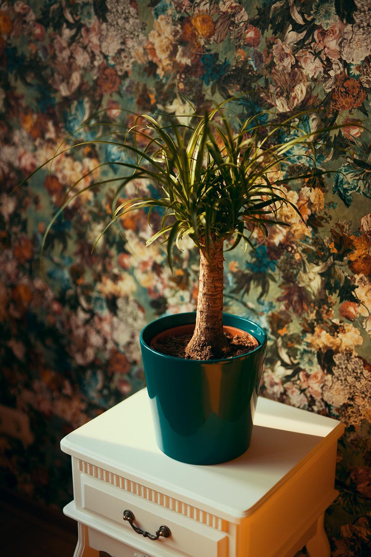 Interior Inspiration Florale Tapete