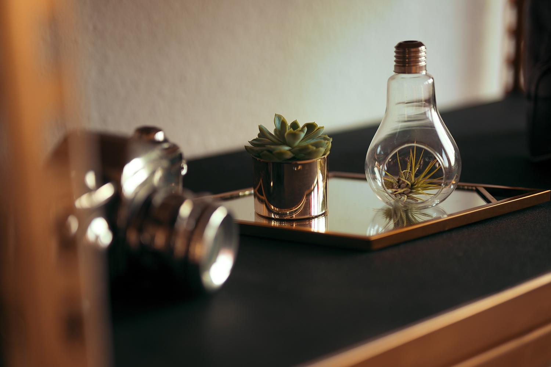 Tillandsien in Glühbirne als Dekoration auf DIY Regal