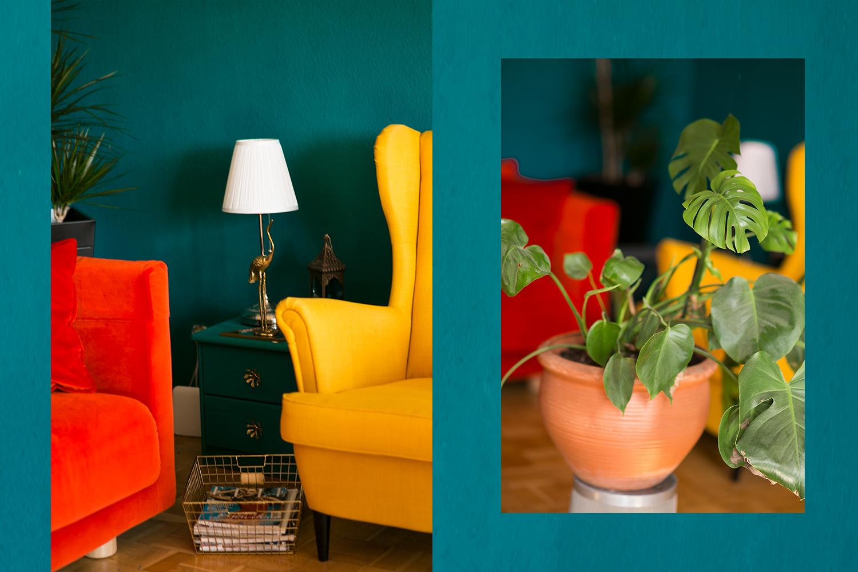 Wohnungsupdate farbenfrohe Einrichtung