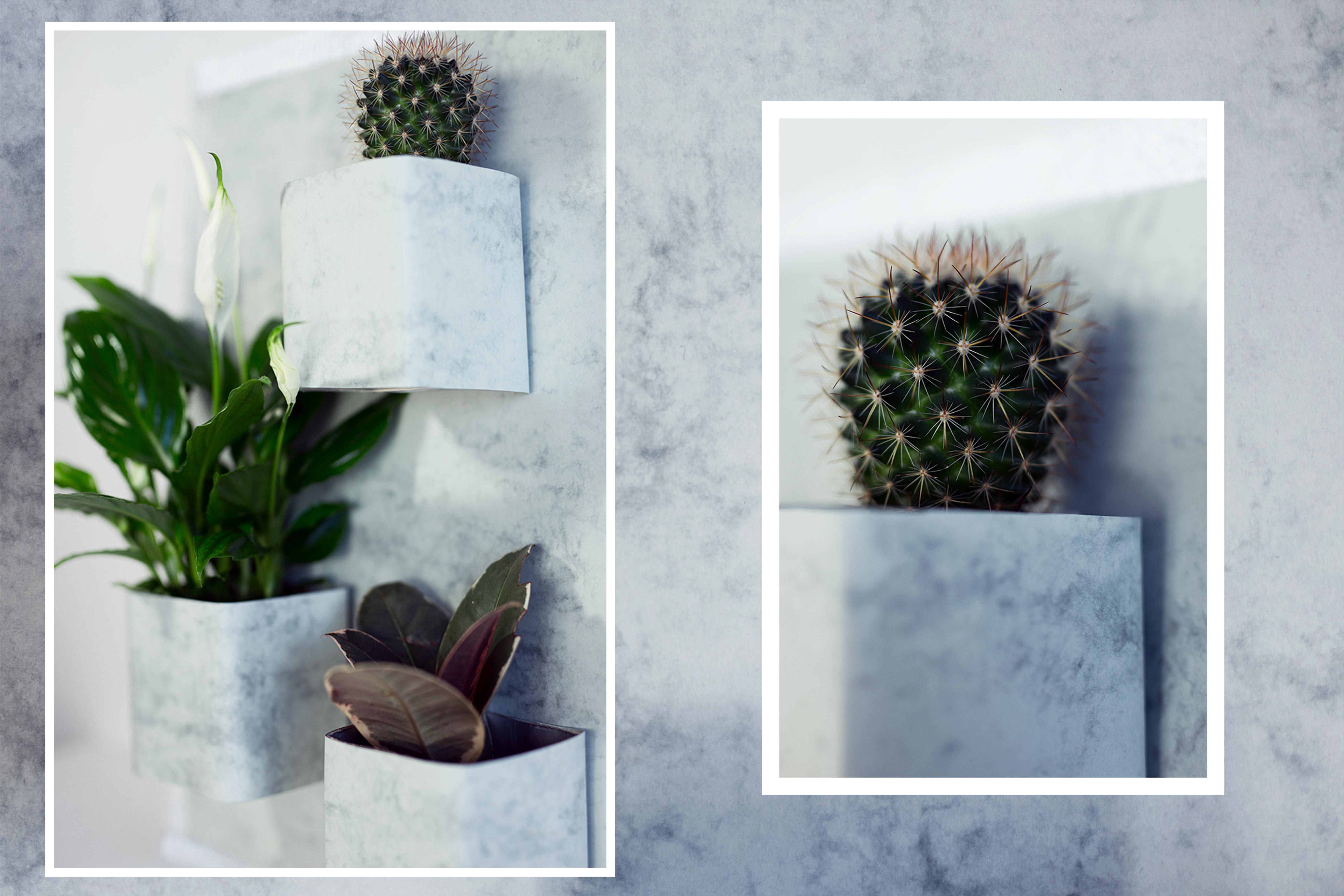 Vertikaler Garten DIY Low Budget Projekt