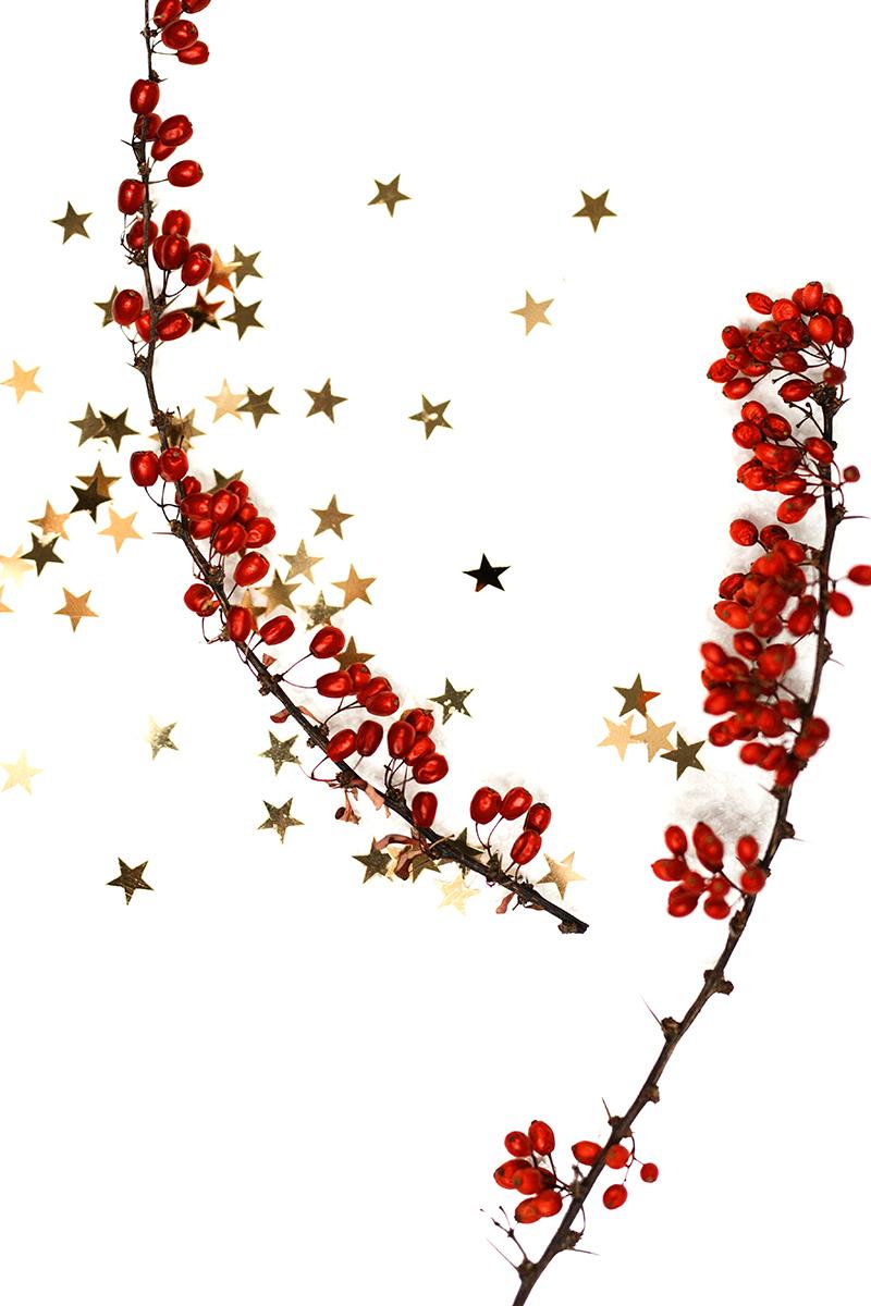 Rote Beeren und Sterne als Deko für Serviettenring