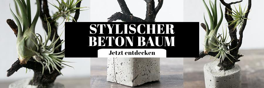 Beton Baum DIY Idee Tillandsien