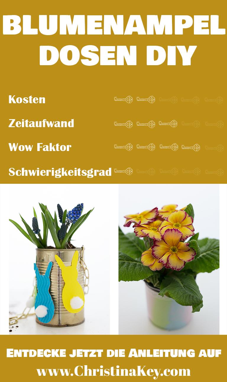 Blumenampel Dosen DIY