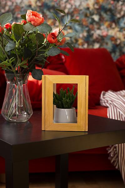 DIY Terrarium Bilderrahmen Ikea Hack Endergebnis