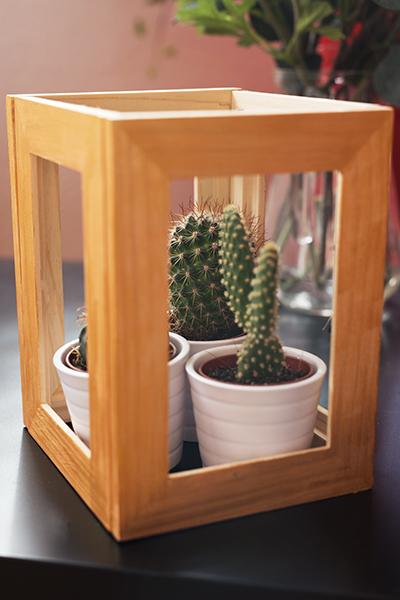 DIY Terrarium Bilderrahmen Ikea Hack Kakteen