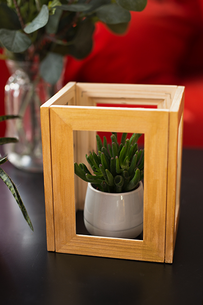 DIY Terrarium Bilderrahmen Ikea Hack Kaktus