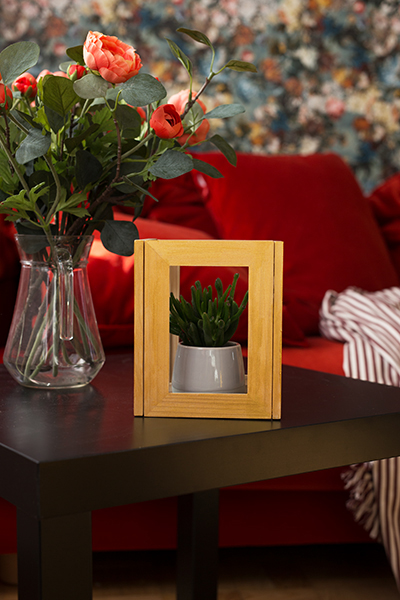 DIY Terrarium picture frame Ikea Hack Idea