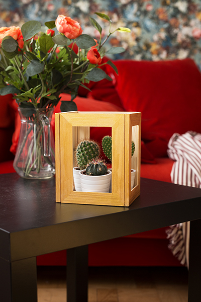 DIY Terrarium picture frame Ikea Hack Interior Idea