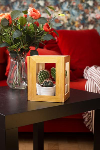 DIY Terrarium picture frame Ikea Hack Interior Idea