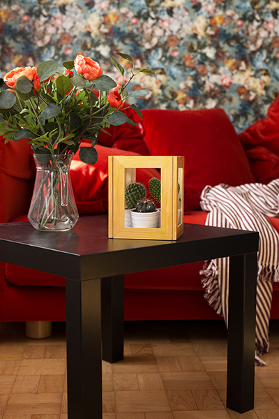 DIY Terrarium picture frame Ikea Hack Interior
