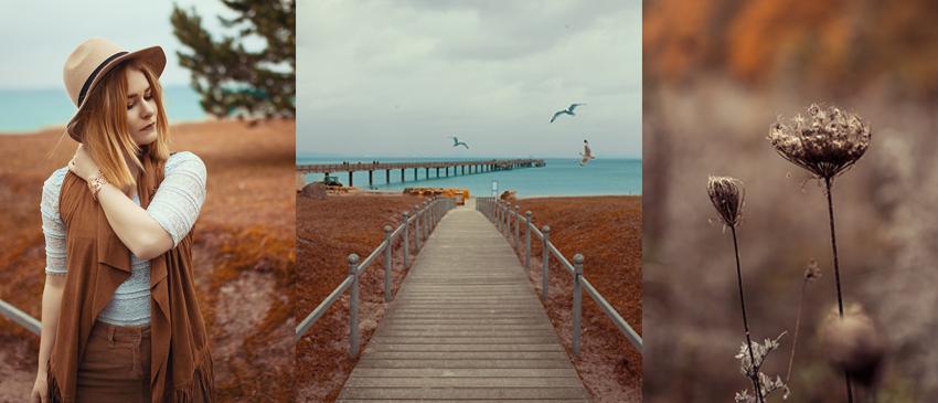 Fotografie Tipps Anfänger Bildgestaltung