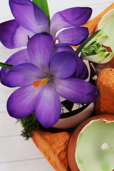 Oster DIY Ideen Tischdeko selber machen mit Blumen