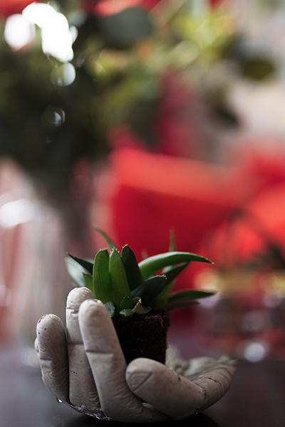DIY Betonhand Pflanzenhalter Bild