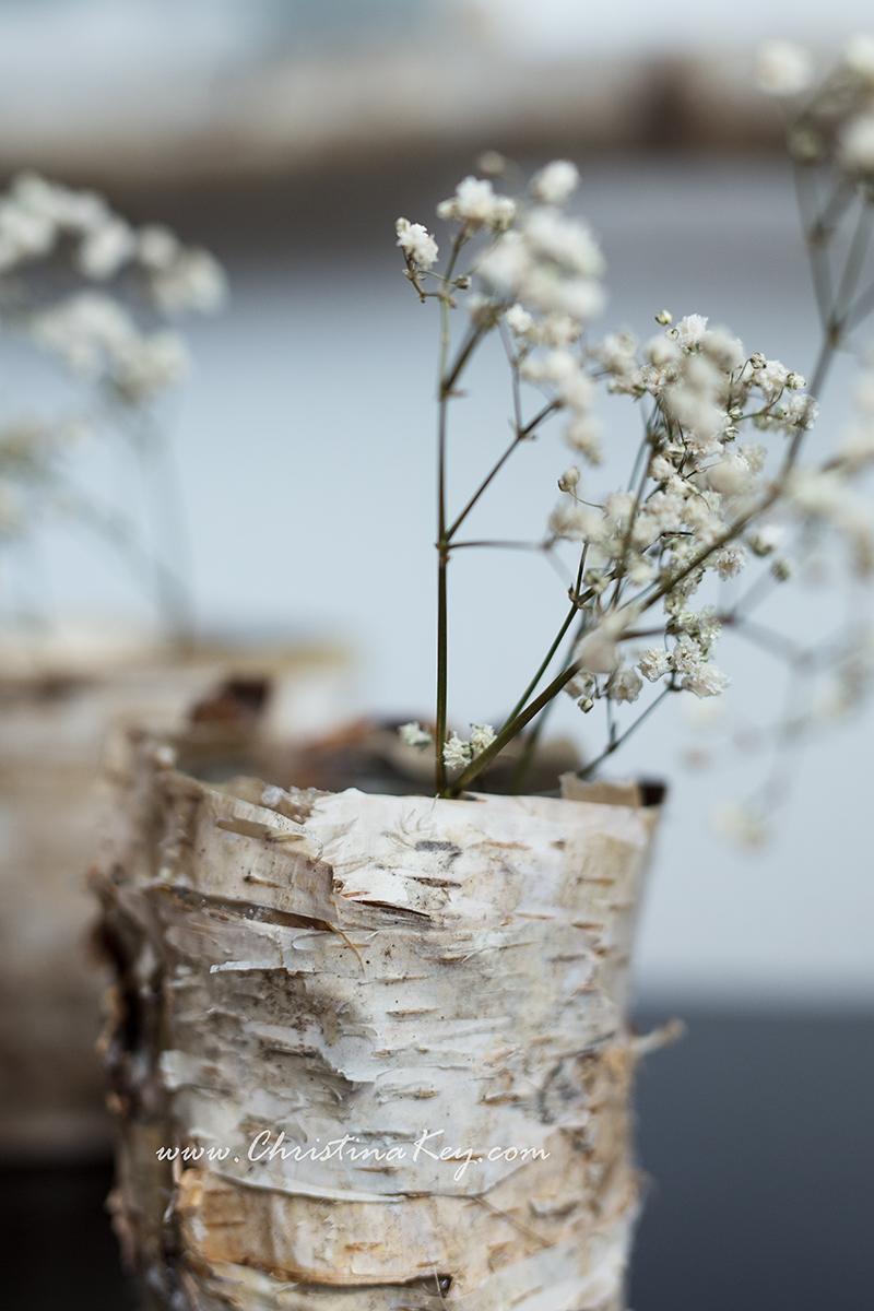 DIY Birken Topf Vase Birkenrinde selber machen