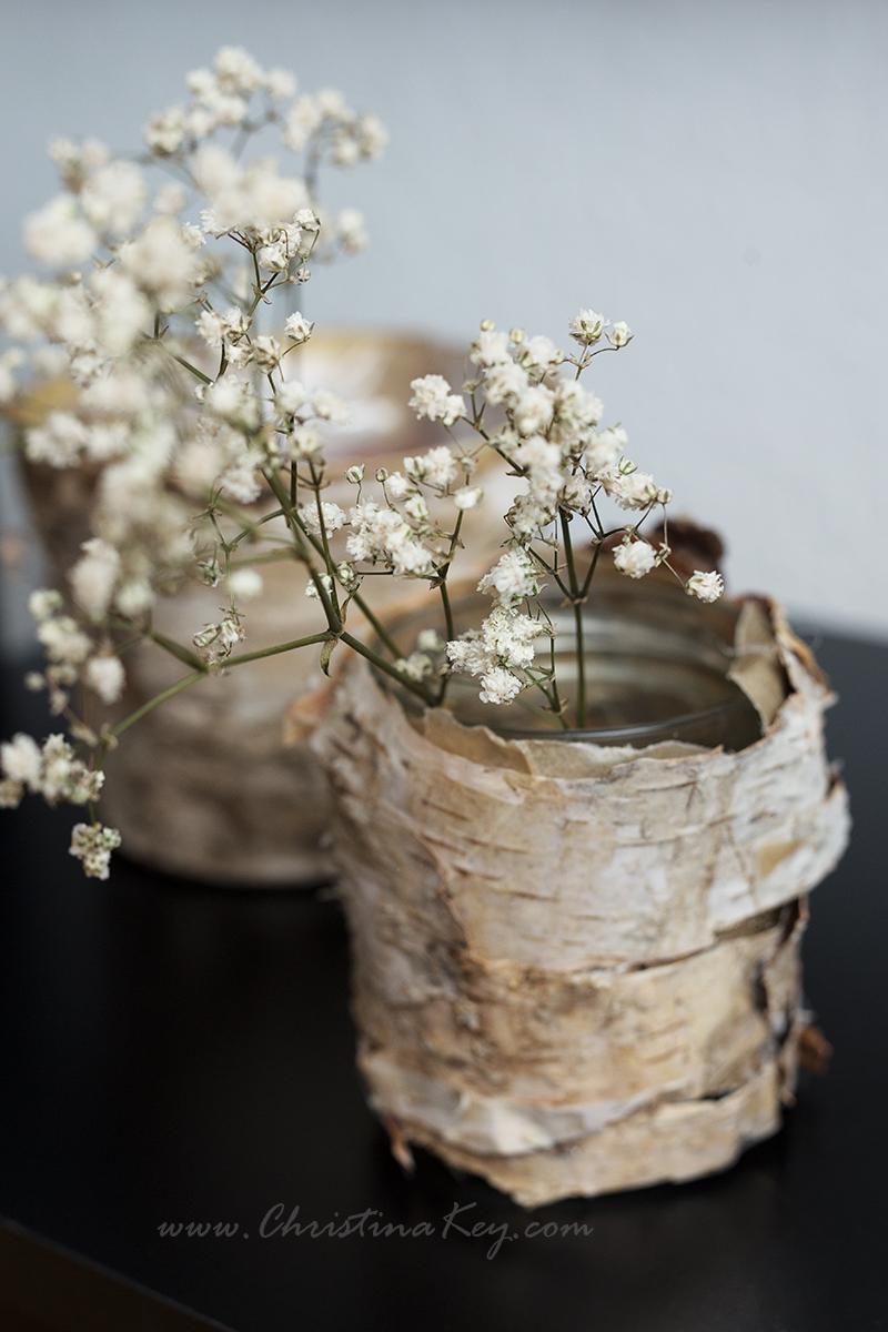 DIY Birken Topf Vase Idee