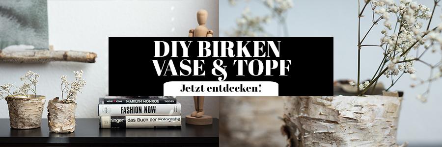 DIY Birken Vase Blumen Topf