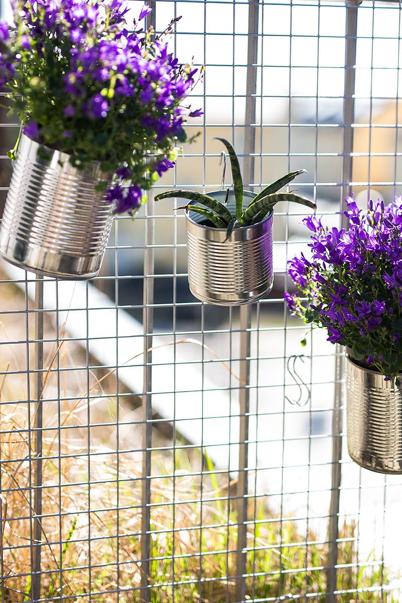 DIY Dosen Blumen Wand Idee