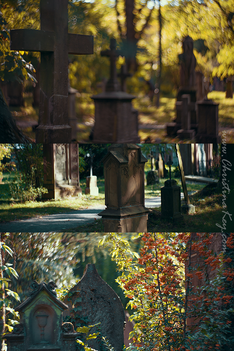 Foto Locations Freiburg Alter Friedhof