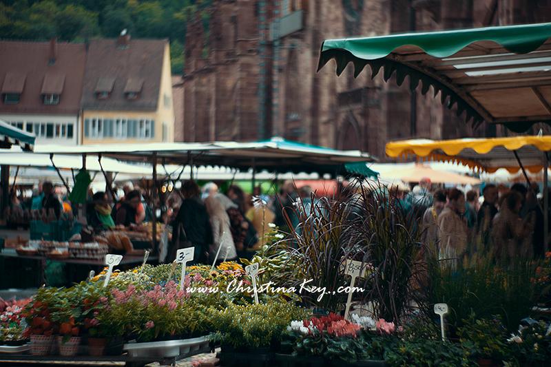 Foto Locations Freiburg Münsterplatz