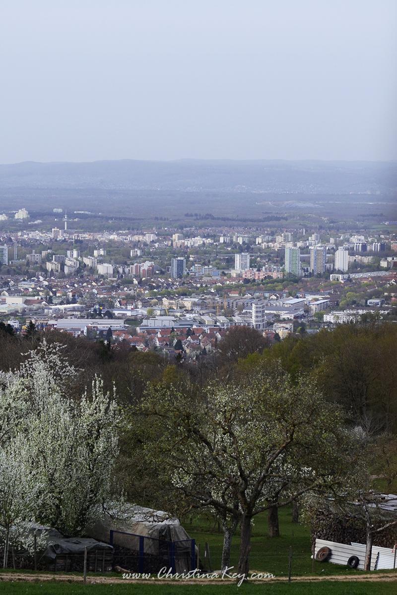 Foto Locations Freiburg Schneeburg Ruine Aussicht