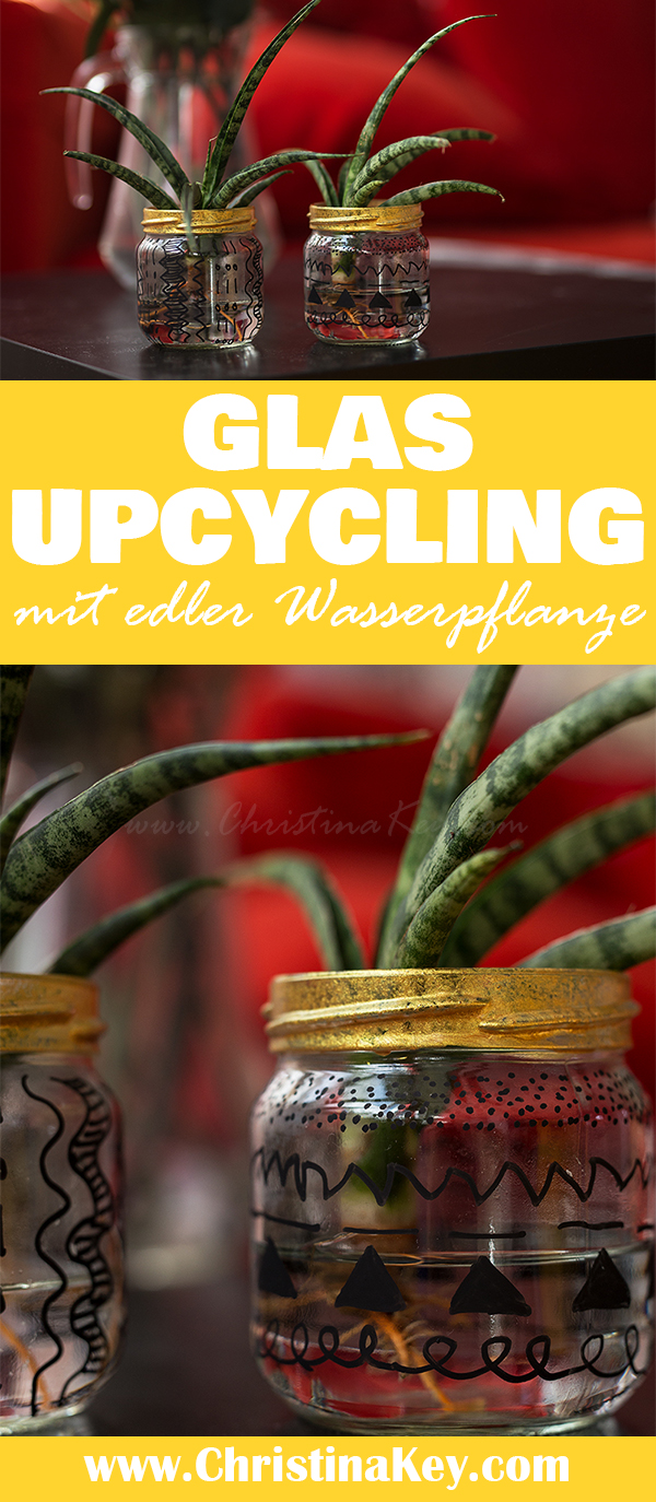 Glas Upcycling DIY mit Wasserpflanze