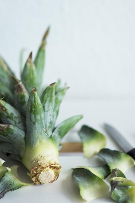 Ananas vermehren Blattschopf entfernen