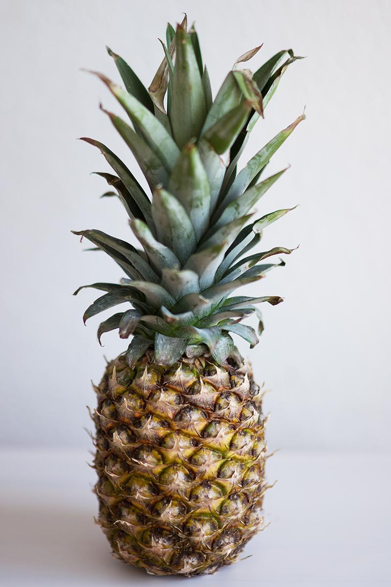 Ananas vermehren Tipps