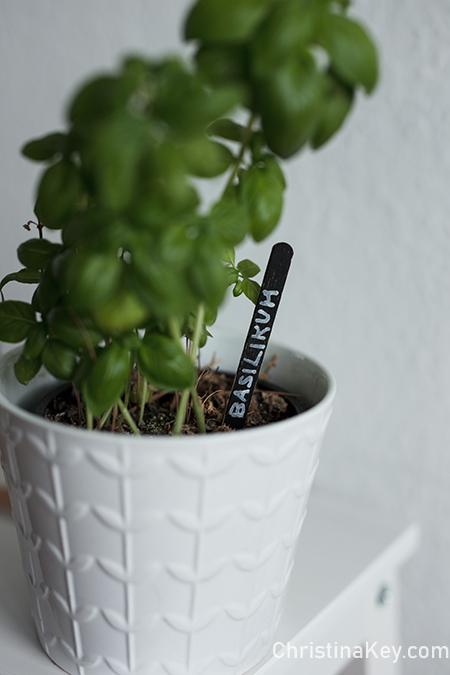 DIY Pflanzenschilder für Basilikum Ableger