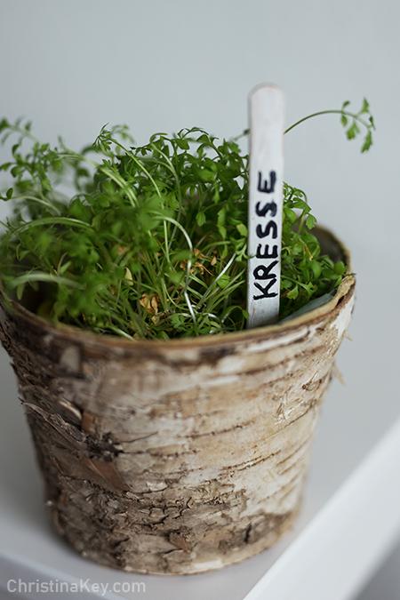 DIY Pflanzenschilder für Gartenkräuter
