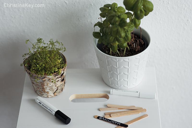 DIY Pflanzenschilder selbst machen