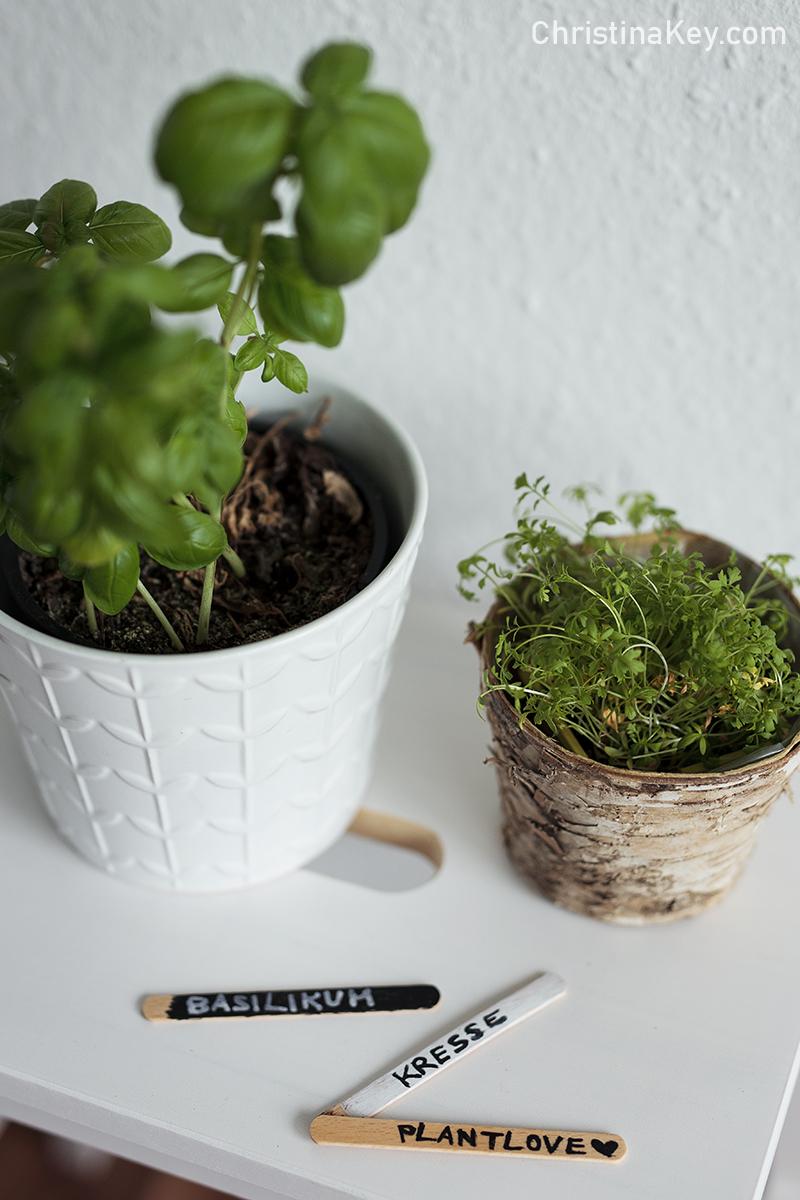 DIY Pflanzenschilder