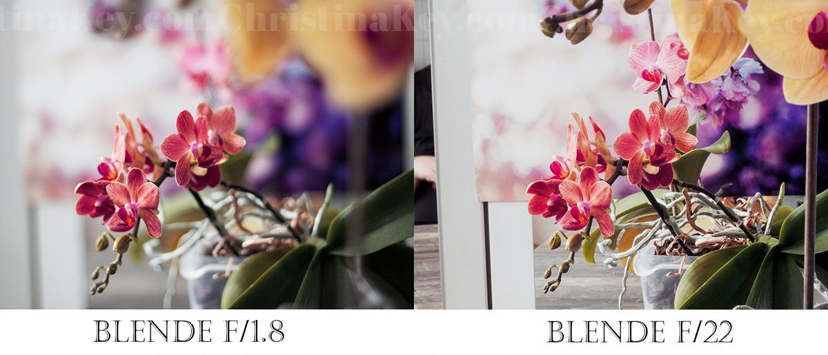 Bokeh Effekt Kamera Foto Tipps