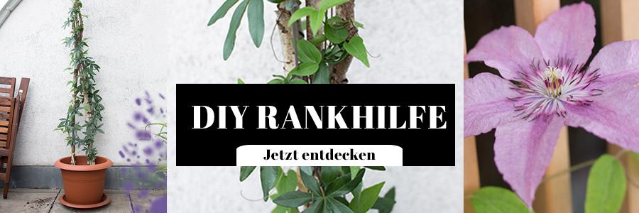 DIY Rankhilfe Garten und Balkon