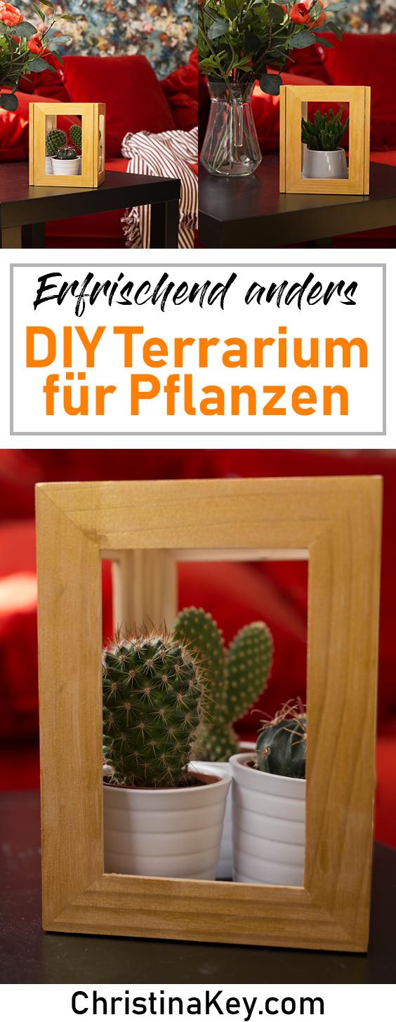 DIY Ideen Zuhause DIY Terrarium