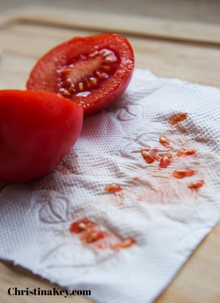 Tomaten pflanzen Anleitung Samen
