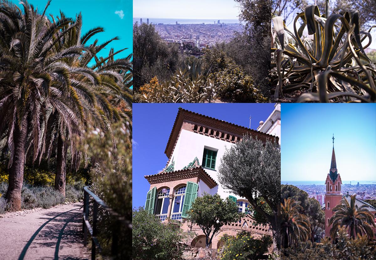 Barcelona Tipps Low Budget Park Güell Fotos