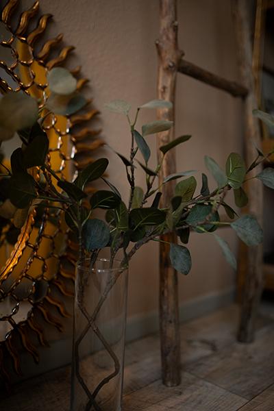 Zimmer einrichten Gemütliche Ideen Pflanzen